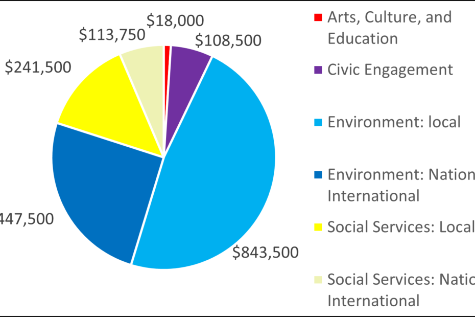Pie chart with 2004 breakdown by category: 18000 Arts, Culture, and Education 108500 Civic Engagement 843500 Environment: local 447500 Environment: National, International 241500 Social Services: Local 113750 Social Services: National, International