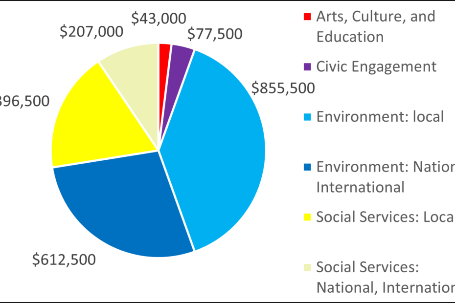 Pie chart showing breakdown for 2006 grants by category: 43000 Arts, Culture, and Education 77500 Civic Engagement 855500 Environment: local 612500 Environment: National, International 396500 Social Services: Local 207000 Social Services: National, International
