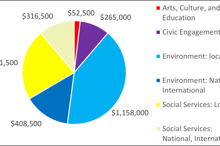 Pie chart showing breakdown by category for 2008: 52500 Arts, Culture, and Education 265000 Civic Engagement 1158000 Environment: local 408500 Environment: National, International 631500 Social Services: Local 316500 Social Services: National, International