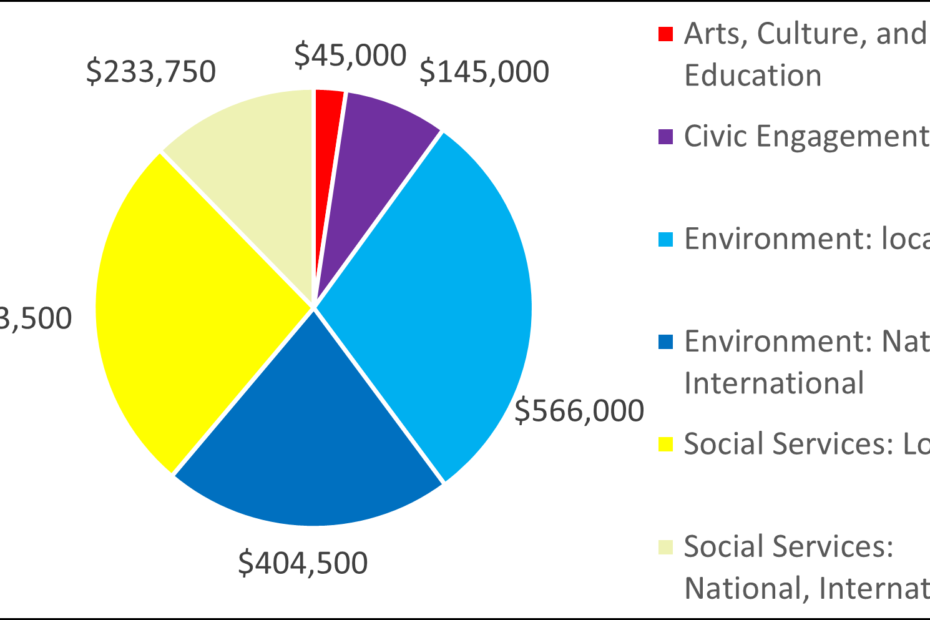 Pie chart showing breakdown by category: 45000 Arts, Culture, and Education 145000 Civic Engagement 566000 Environment: local 404500 Environment: National, International 503500 Social Services: Local 233750 Social Services: National, International