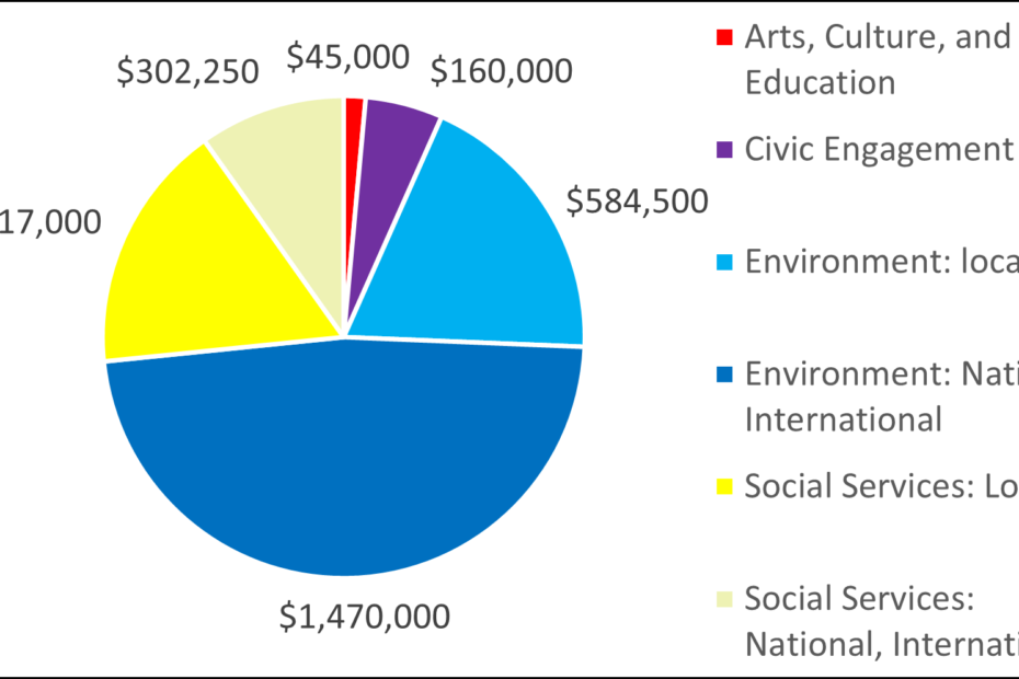 Pie chart showing breakdown by category: 45000 Arts, Culture, and Education 160000 Civic Engagement 584500 Environment: local 1470000 Environment: National, International 517000 Social Services: Local 302250 Social Services: National, International