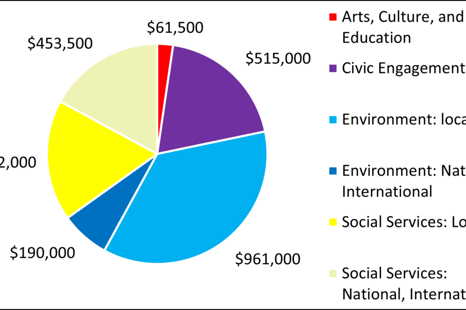 Arts, Culture, and Education 61500 Civic Engagement 515000 Environment: local 961000 Environment: National, International 190000 Social Services: Local 472000 Social Services: National, International 453500